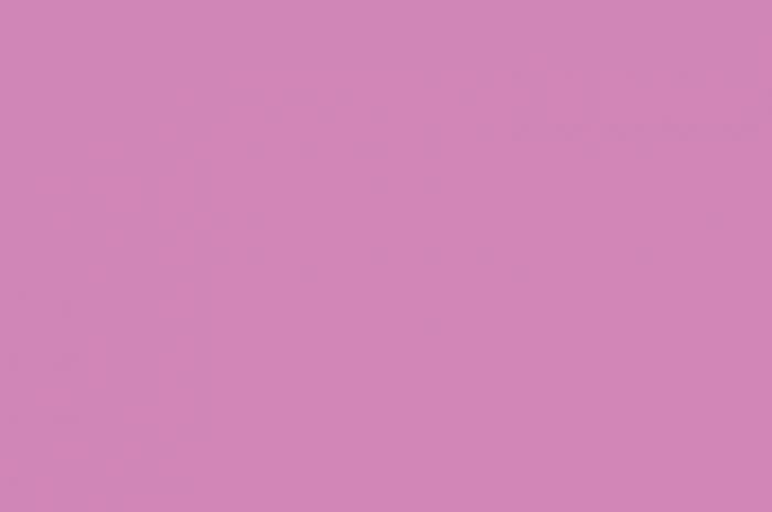 Pink Smll Plain